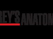 Mais um spin-off para Anatomia de Grey