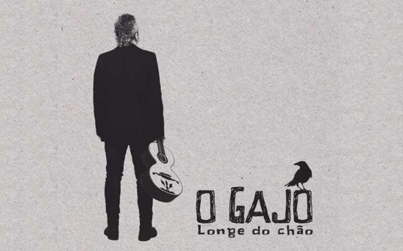 João Morais, d'O Gajo.